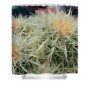 Spiny Barrel Cactus Shower Curtain