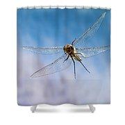 Spiny Baskettail Epitheca Spinigera Shower Curtain