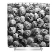 Spirals Black And White Shower Curtain by Priska Wettstein