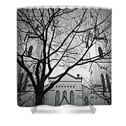 Spire Tree Shower Curtain