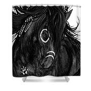 Spirit Feathers Horse Shower Curtain