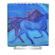 Spirit Guide By Jrr Shower Curtain