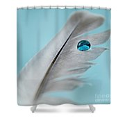 Spirit Guide Shower Curtain