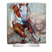 Spirit Of A War Pony  Shower Curtain