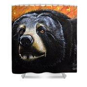 Spirit Of The Bear Shower Curtain