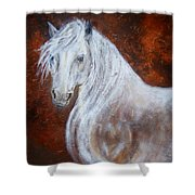 Spirit Of The Heart Shower Curtain by The Art With A Heart By Charlotte Phillips