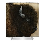 Spirit Of The Plains  Shower Curtain