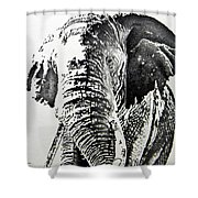 Spirit Of The Serengeti Shower Curtain