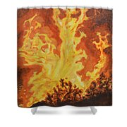 Spirits Of Sati Shower Curtain