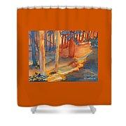 Spiritual Forest Shower Curtain