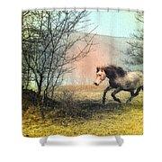 Spiritus Equus Shower Curtain