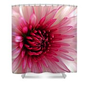 Splash Of Pink Shower Curtain