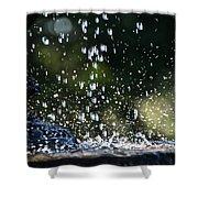 Splashing Shower Curtain