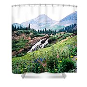 Splendid Wonder Shower Curtain