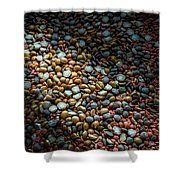 Split Pea Abstract Shower Curtain