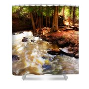 Split Rock River Shower Curtain