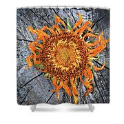 Split Sunflower Shower Curtain
