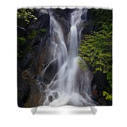 Split Top Falls Shower Curtain