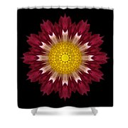 Spoon Chrysanthemum I Flower Mandala Shower Curtain