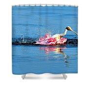 Spoonbill Bath Time  Shower Curtain