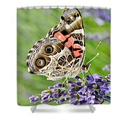 Spotted Butterfly Shower Curtain