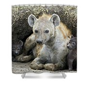 Spotted Hyena Mother And Pups Shower Curtain
