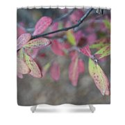 Spotted Leaves Shower Curtain