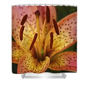 Spotted Lilly Shower Curtain