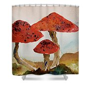 Spotted Mushrooms Shower Curtain
