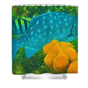 Spotted Surgeon Fish Shower Curtain