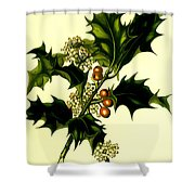 Sprig Of Holly With Berries And Flowers Vintage Poster Shower Curtain