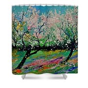 Spring 452121 Shower Curtain
