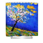 Spring 563140 Shower Curtain