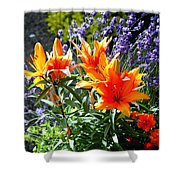Spring 921 Shower Curtain