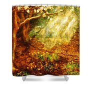 Spring - A Sign Of Spring Shower Curtain