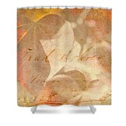 Spring Afternoon Sunlight Shower Curtain