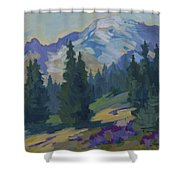 Spring At Mount Rainier Shower Curtain