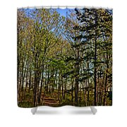 Spring At The Pond Series IIi Shower Curtain