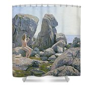 Spring At The Rock Shore  Shower Curtain