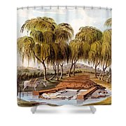 Spring At The Source Of The Skamander Shower Curtain