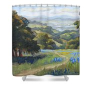Spring At Toro Park Shower Curtain