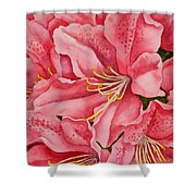 Spring Azalea Shower Curtain