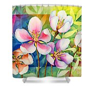Spring Ballerinas Shower Curtain