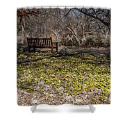 Spring Beal Shower Curtain