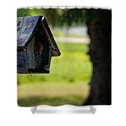 Spring Birdhouse Shower Curtain