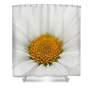 Spring Bloom Shower Curtain