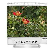 Spring Blooms In Colorado Shower Curtain