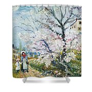 Spring Blossom Shower Curtain by Henri Richet