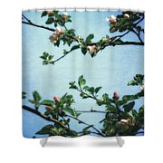 Spring Blossoms 2.0 Shower Curtain