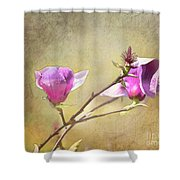 Spring Blossoms - Digital Sketch Shower Curtain